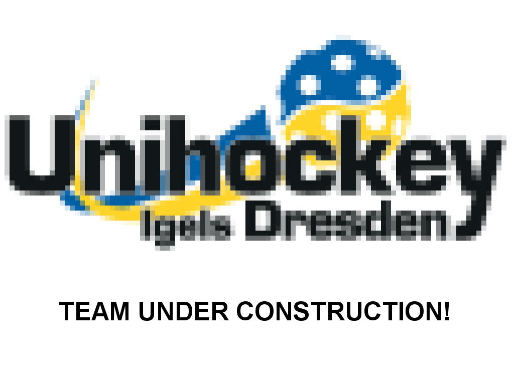 Mannschaftsfoto der U13 2017/2018